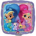 Shimmer & Shine party